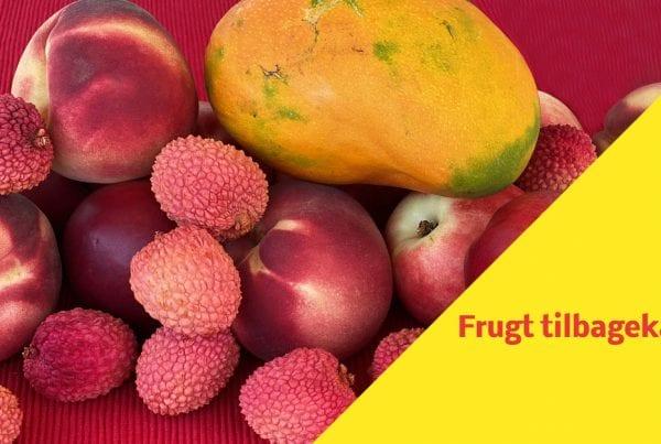 Fødevarestyrelsen: Frugt tilbagekaldes