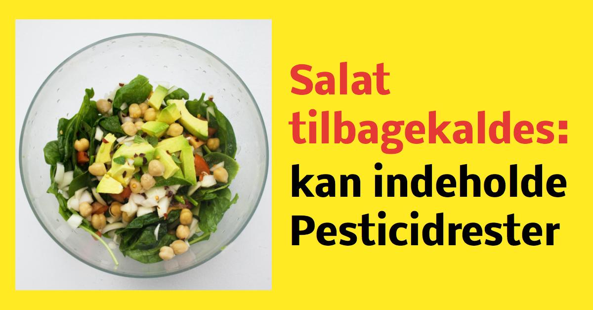Salat tilbagekaldes - kan indeholde Pesticidrester