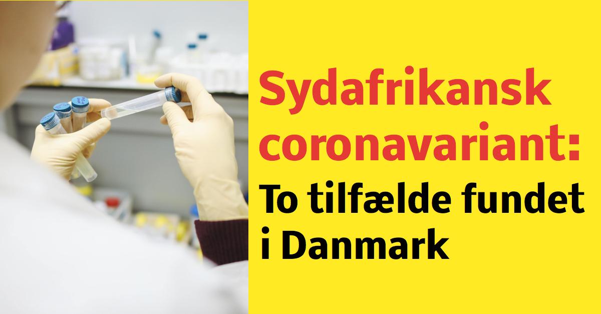 To tilfælde af sydafrikansk virusvariant fundet i Danmark
