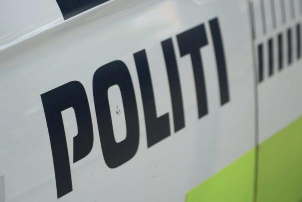 Kvinde overfaldet og frarøvet taske - nu efterlyser politiet gerningsmanden